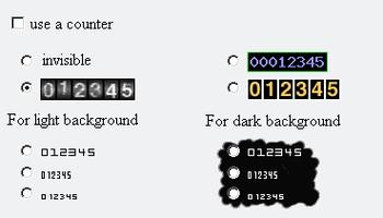 Web counter