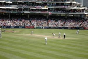 Test (cricket)