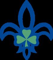 Federation of Irish Scout Associations